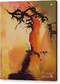 Fisure Acrylic Print by Carolyn Weir
