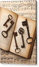 Five Old Keys Acrylic Print by Garry Gay