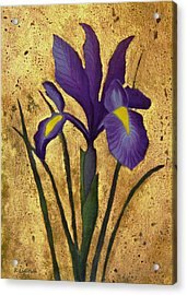 Acrylic Print featuring the mixed media Flag Iris With Gold Leaf by Kerri Ligatich