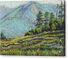 Acrylic Print featuring the painting Flagstaff Meadow by Drusilla Montemayor