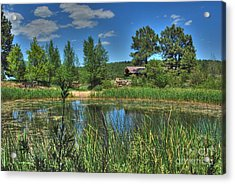 Acrylic Print featuring the photograph Flagstaff by Tam Ryan