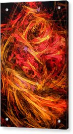 Flamboyance Acrylic Print by RochVanh