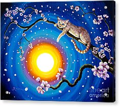 Flame Point Siamese Cat In Cherry Blossoms Acrylic Print by Laura Iverson