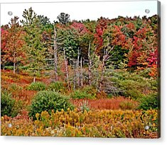 Acrylic Print featuring the photograph Flaming Meadow by Christian Mattison