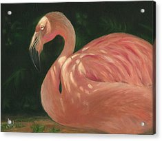 Acrylic Print featuring the painting Flamingo In Dappled Light by Joe Winkler