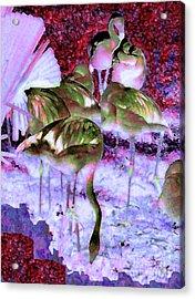 Flamingotasia Acrylic Print by Elinor Mavor