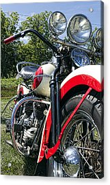 Flathead Acrylic Print by Peter Chilelli