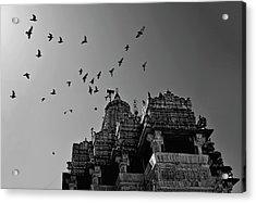 Flight Of Birds Above Jadgish Temple Acrylic Print by Prashanth Naik