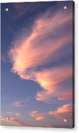 Flight Of Fancy Acrylic Print by John  Bartosik