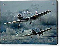 Flight Of The Winjeels Acrylic Print