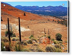 Flinders Ranges Hucks Lookout Acrylic Print by Patricia Tapping