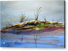 Floating Log Acrylic Print by Ramona Kraemer-Dobson