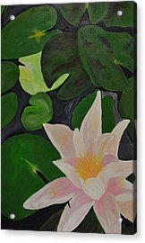 Floating Lotus 2 Acrylic Print by Holly Donohoe