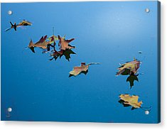 Floating On The Sky Acrylic Print