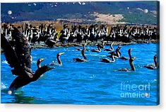 Flock Acrylic Print by Tap On Photo