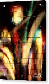 Acrylic Print featuring the photograph Floral Abstract II by Sharon Elliott
