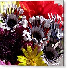Floral Bliss Acrylic Print by Monika A Leon