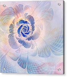 Floral Impression Acrylic Print by John Edwards