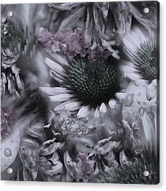 Floral Montage No.1 Acrylic Print by Bonnie Bruno