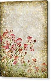 Floral Pattern Acrylic Print by Setsiri Silapasuwanchai