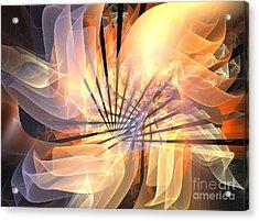 Floral Supernova Acrylic Print by Kim Sy Ok