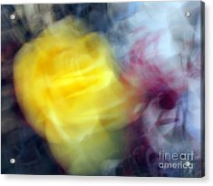 Florals In Motion 3 Acrylic Print by Cedric Hampton