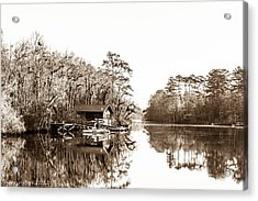 Acrylic Print featuring the photograph Florida by Shannon Harrington