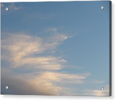 Florida Sky I Acrylic Print by Suzanne Fenster