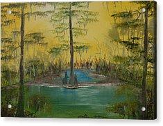 Florida Swamp Acrylic Print by Katheryn Napier