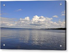 Acrylic Print featuring the photograph Floridian View by Sarah McKoy