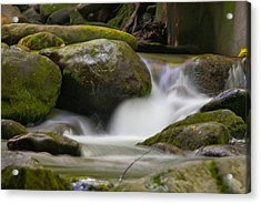 Acrylic Print featuring the photograph Flow by Cindy Haggerty