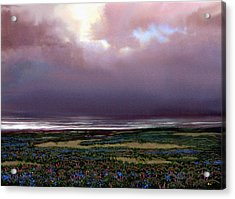 Flower Beach Acrylic Print by Robert Foster
