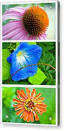 Flower Collage Part Two Acrylic Print by Susan Leggett
