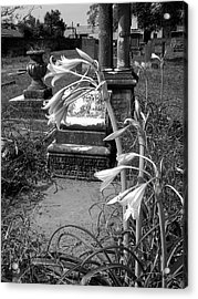 Flower Old Grave Acrylic Print by Floyd Smith