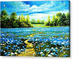 Flower Path Way Acrylic Print by Nelsons