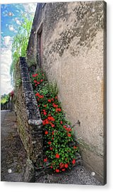 Acrylic Print featuring the photograph Flower Stairway by Dave Mills