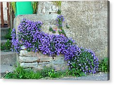 Flowered Steps Acrylic Print by Rene Triay Photography