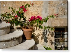 Flowerpot On Stairs In Kocura Croatia Acrylic Print