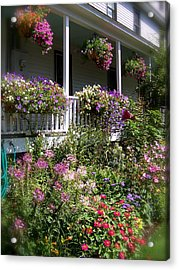 Acrylic Print featuring the photograph Flowers Everywhere by Robin Regan