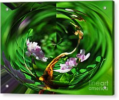 Acrylic Print featuring the photograph Flowers Gone Wild by Cindy Manero