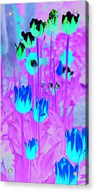 Acrylic Print featuring the photograph Flowers by Josef Pittner