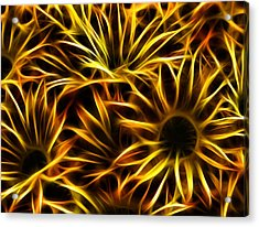 Acrylic Print featuring the photograph Flowers Of Flames by Joetta West