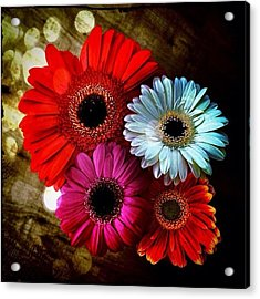 Flowers Part 3 Acrylic Print by Andre Brands