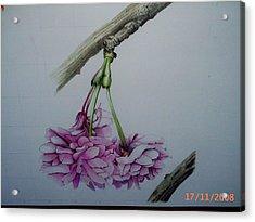 Flowers Acrylic Print by Per-erik Sjogren