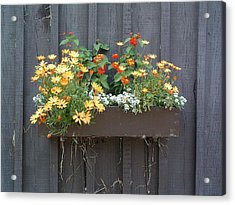 Flowers Summer Blooms On The Barn Acrylic Print