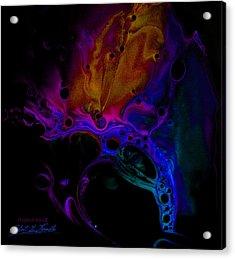 Fluidism Aspect 601-b Photography Acrylic Print by Robert Kernodle