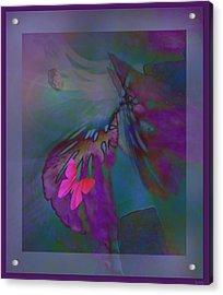 Flutter Of The Butterfly Acrylic Print by Debra     Vatalaro