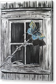 Fly Away Free Acrylic Print
