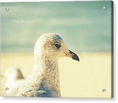 Acrylic Print featuring the photograph Fly Away by Robin Dickinson