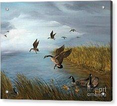 Flying Geese Acrylic Print